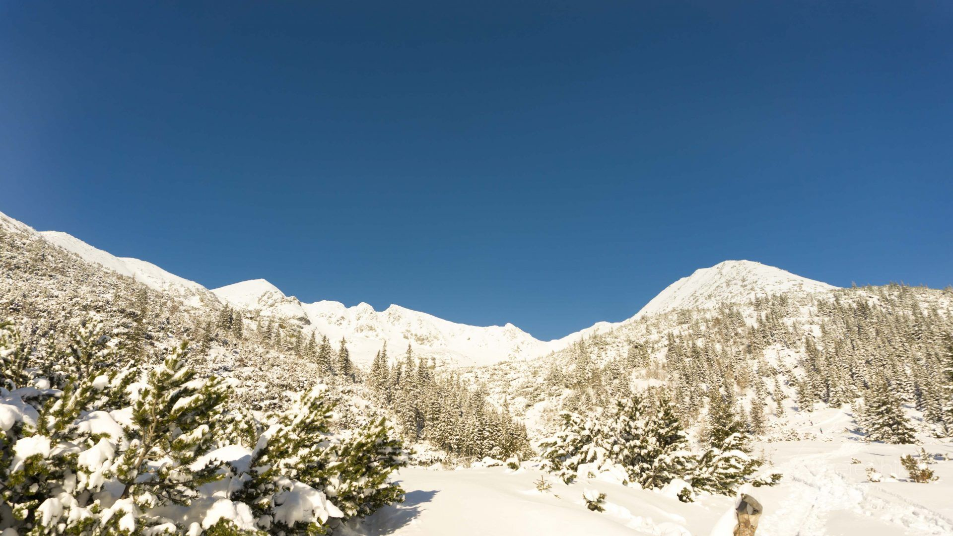 Easy Winter Hikes In Tatra Mountains Slovakia Hereihike